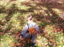 Biedronki w parku