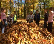 Złota jesień w grupie Biedronek